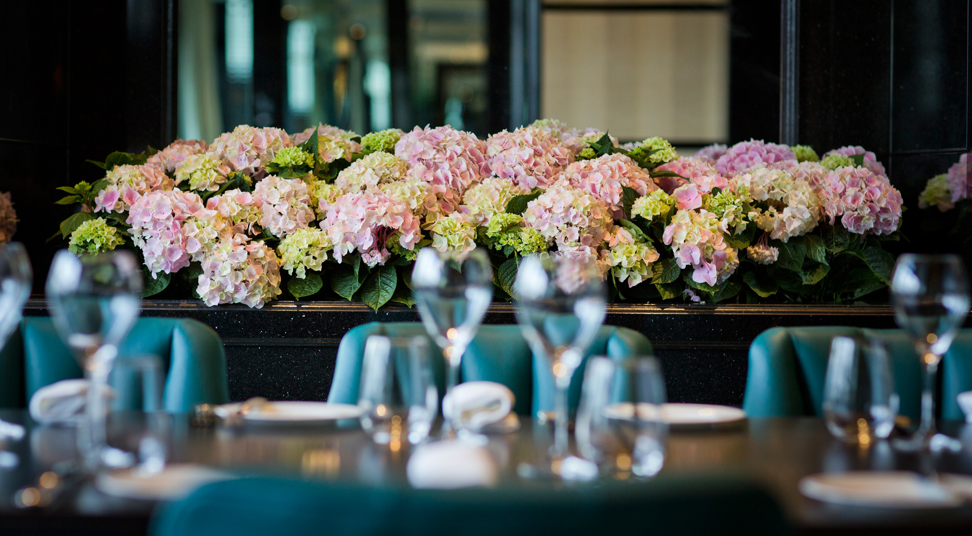 Hydrangeas Kaspars private dining