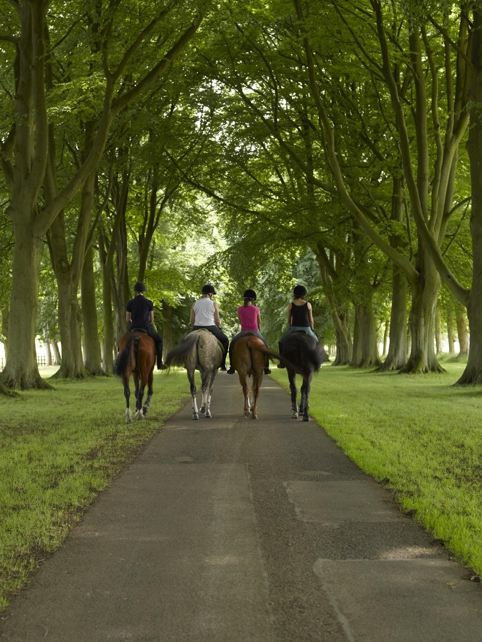 Group Ride at Luckham Park