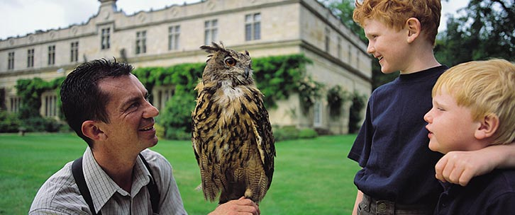 Stapleford Park Falconer, Pete Sibson